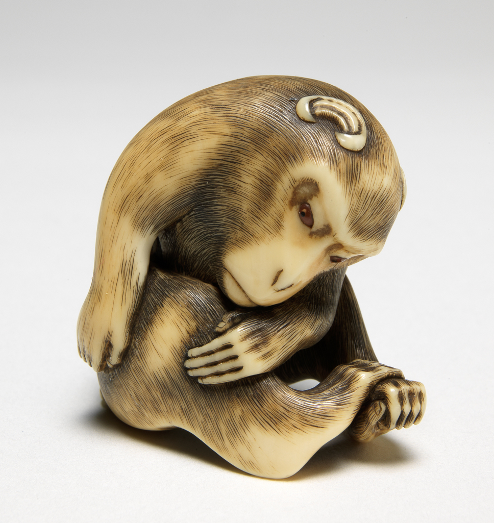 Featured image for the project: A monkey resting
